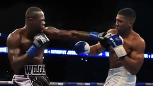 Anthony Joshua Will Almost Certainly Fight Deontay Wilder In 2018