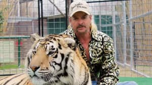 Zoo Formerly Owned By Joe Exotic Is Subject Of Animal Welfare Investigation
