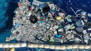 Ocean Cleanup Device Collects Plastic Waste From The Sea For First Time