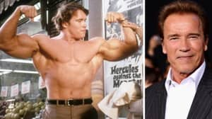 Arnold Schwarzenegger Wishes He Could Run For President Rather Than Donald Trump