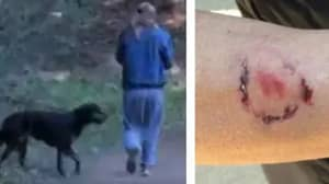 Woman Arrested For Allegedly Biting Jogger Who Pepper-Sprayed Her Dog