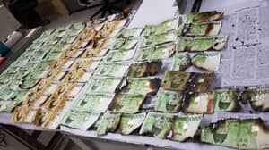 Person Tries Putting Bank Notes In Washing Machine To Remove Coronavirus Traces