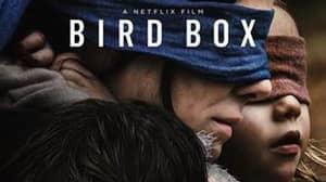 'Bird Box' Breaks Netflix Records With Over 45 Million Views