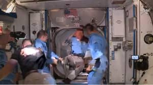 Astronaut Doug Hurley Bangs Head Upon Entering The International Space Station