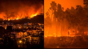 Tourists Evacuated As Wildfires In Portugal Cause Devastation For Third Day Running