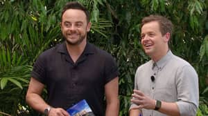Ant McPartlin Excited To Be Back With Declan Donnelly For 'I'm A Celeb'