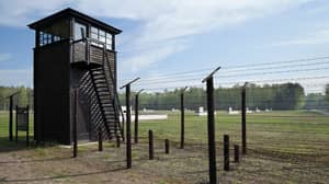 A 96-Year-Old Who Worked At Nazi Camp Has Been Arrested After Skipping Trial