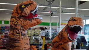 Woman Sets Sights On World Record For People Gathering In Dinosaur Suits