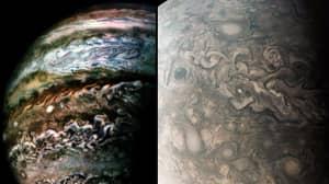 NASA's Juno Spacecraft Captures Incredible Images Of Jupiter