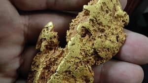Prospector Finds Rare Gold Nugget Worth £14,700