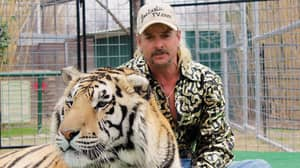 Tiger King Star Warns Joe Exotic Will Be Out For Revenge If Pardoned