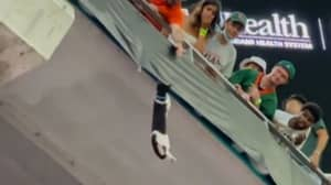 Quick-Thinking Football Fans Use Flag To Catch Falling Cat At Football Game