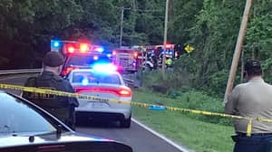 Brothers, 6 And 7, Die In Road Accident While Driving Grandmother's Car