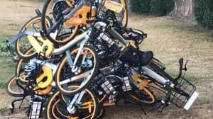 People Seem To Really F***ing Hate Those Rental Bikes In Australia