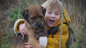 Three-Year-Old Reunited With Stolen Dog After £10,000 Reward Was Offered