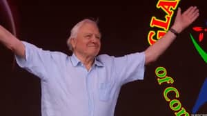Sir David Attenborough Makes Surprise Appearance At Glastonbury To Warn Against Plastic Pollution