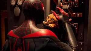 New Spider-Man Game Will Feature A Crime Fighting Spider-Cat