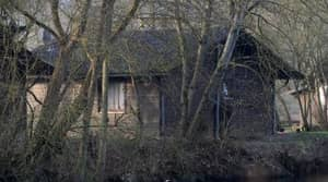 Guy Books Stay In Creepy Cabin, Ends Up Way More Creeped Out Than Expected