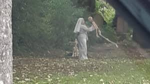 'Nun' Photographed Dancing With Skeleton Model In Graveyard