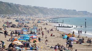 British Beach Evacuated After 'Shark' Spotted Swimming Near Shore