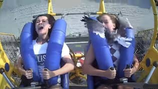 Teen Slapped In Face By Seagull On 75MPH Sling Shot Ride