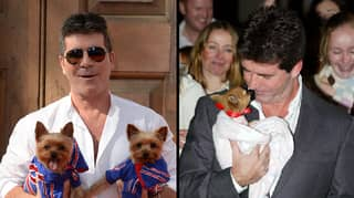 Simon Cowell Donates £25,000 To An Anti-Dog Meat Charity