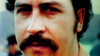 Netflix Is Making A Movie About Pablo Escobar's 'Cocaine Hippos'