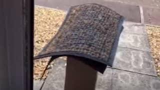 TikTok User In Hysterics After Delivery Driver Leaves Huge Parcel Under Doormat