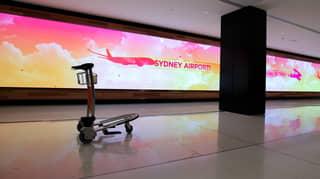Peak Travel Body Says International Travel Won't Return To Normal Until At Least 2024