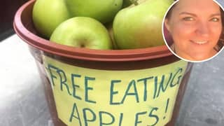 Nurse Fined £150 For Leaving Free Apples Outside Her House For Neighbours