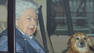 The Queen Has Released A Statement During Coronavirus Pandemic