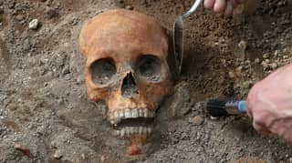Remains Of Medieval Humans Found During Archaeological Dig