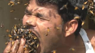 Indian Honey Collector Stuffs Bees In His Mouth For No Reason