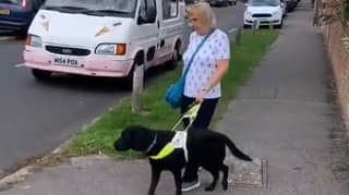 How To Tell If Someone With A Guide Dog Needs Some Help