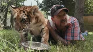 New Episode Of Tiger King On Netflix Disappoints Viewers
