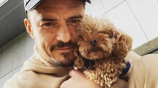 Orlando Bloom Confirms His Dog Mighty Is Dead And Gets Tattoo Tribute