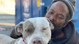 Homeless Man Runs Into Burning Animal Shelter To Rescue Cats And Dogs