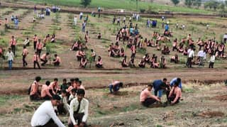 Social Media Campaign Sees 66 Million Trees Planted In India In 12 Hours