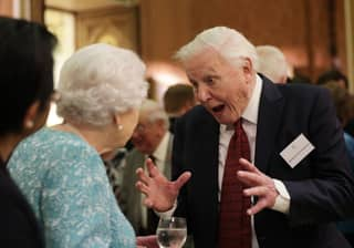 Sir David Attenborough Tries To Scare The Queen In Her Natural Habitat