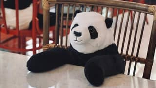 Restaurant Puts Panda Toys At Tables To Keep Diners Company While Social Distancing
