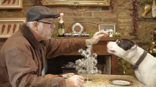 Alternative John Lewis Christmas Advert Has Viewers In Tears