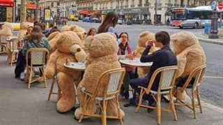 Cafe In Paris Is Using Giant Teddy Bears To Socially Distance Customers