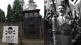 Nazi Crime Prosecutor Has Chilling Reminder Of The Effects Of War