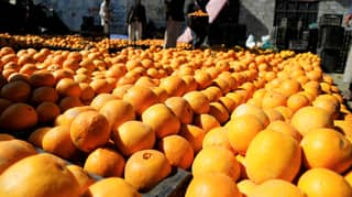 Passengers Sustain Mouth Ulcers After Eating 30kg Of Oranges To Avoid Baggage Fee