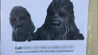 Dumped Man Gets Public To Call His Ex-Girlfriend Impersonating Chewbacca