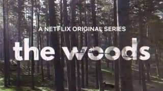 The Stranger Creator Confirms New Series The Woods Will Be Released Next Month