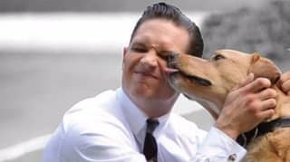 There's An Instagram Account Dedicated To Pictures Of Tom Hardy Holding Dogs