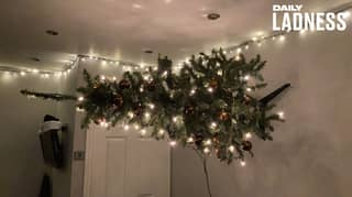 Guy Pranks His Mum By Nailing Christmas Tree To The Wall Sideways