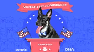 US President-Elect Joe Biden's Dog Will Get His Own Indoguration