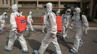 China Suggests Coronavirus Didn't Start In Wuhan And Blames Australian Beef